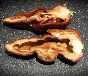 Chocolate Naga Sliced